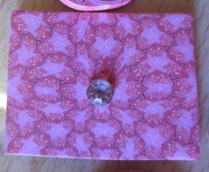 sarah shriver kaleidoscope cane experiment